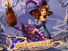 Дикие Ведьмы